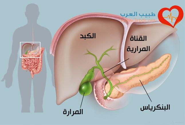 تعرف على أضرار استئصال المرارة مجلة اليمن الطبية
