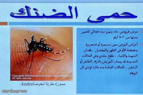 كل ما يجب أن تعرفه عن حمى الضنك مجلة اليمن الطبية